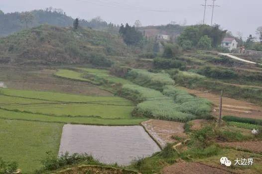 三个月内把荒地全部耕种起来,否则将有数亿人饿死